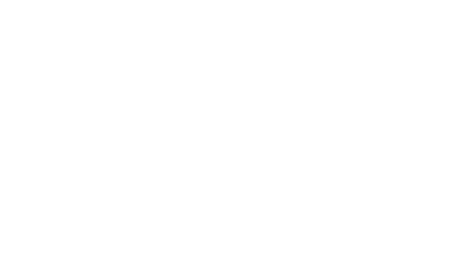 Chargeback Prevention Alert System